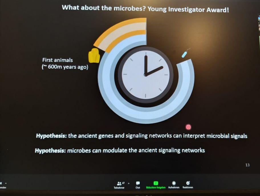 CRC1182 Young Investigator Award 2020