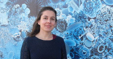 BIG NEWS! Joining the Institute of Marine Science (ICM-CSIC) thanks to La Caixa Junior Group Leader Program